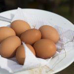 Kesän kauneimmat munat