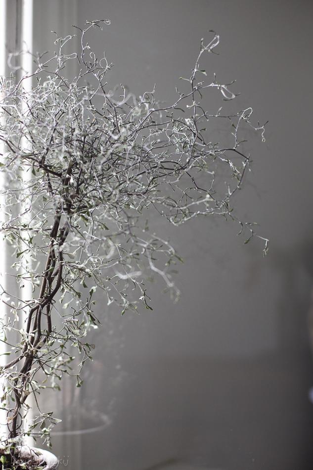 doritsalutskij-kummituspuu-4