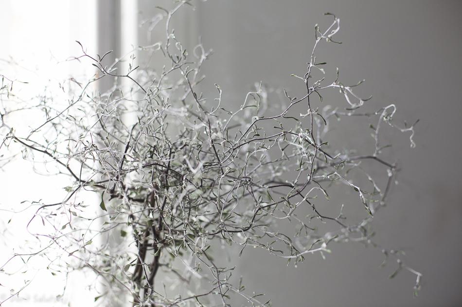 doritsalutskij-kummituspuu