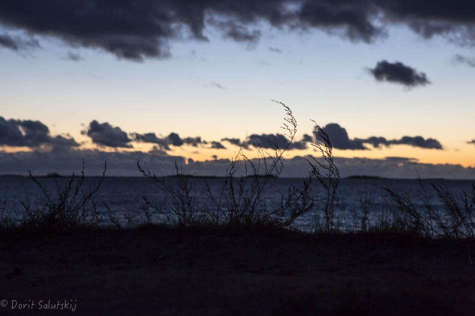 doritsalutskij-rannalla-12
