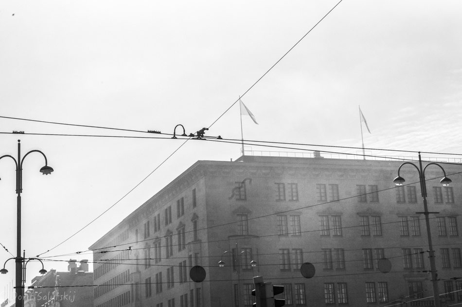 doritsalutskij.fi-päiväkuvina-22