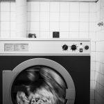 Pyykkimuija